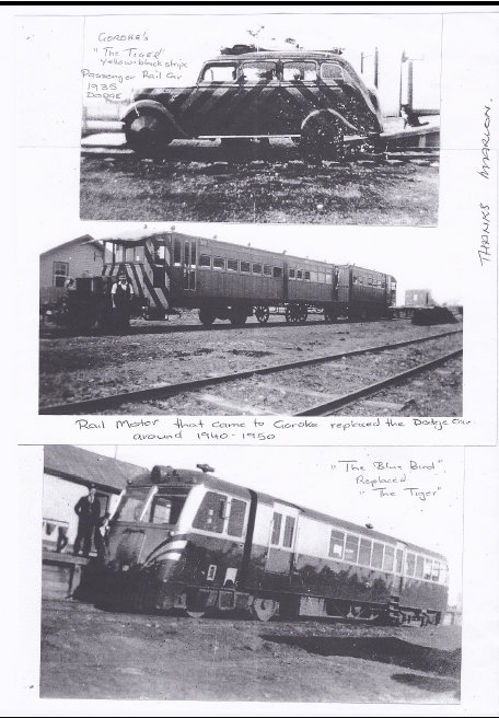 Tiger railway Goroke
